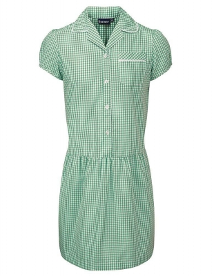 BMB ASHLEY BUTTON FRONT GINGHAM DRESS
