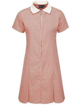 TOWNHILL PRIMARY SCHOOL GINGHAM DRESS