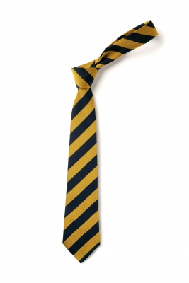 JAMES AITON PRIMARY SCHOOL TIE