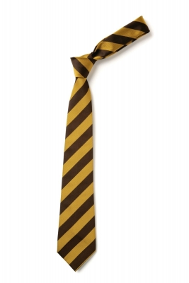 ST FRANCIS PS TIE