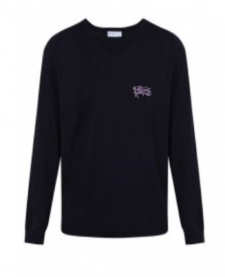 MEIGLE PRIMARY SCHOOL KNITTED JUMPER