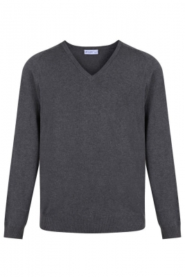 Regular fit v-neck cotton jumper