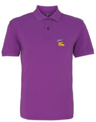 CHERRYTREES ASQUITH & FOX CLASSIC FIT POLOSHIRT