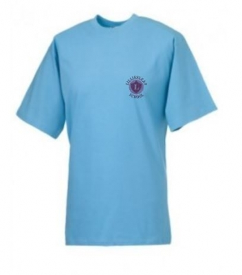 LILLIESLEAF PRIMARY SCHOOL T-SHIRT