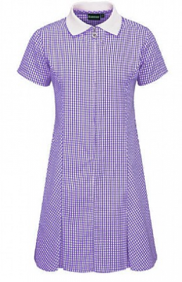 ST KENNETHS PRIMARY SCHOOL GINGHAM DRESS