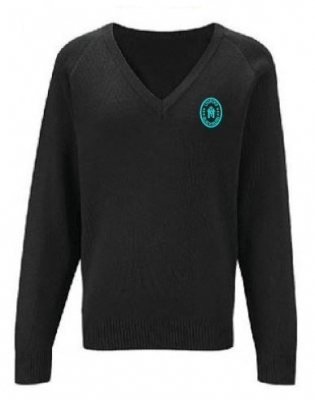 OUR LADY OF LOURDES PRIMARY SCHOOL KNITTED V-NECK