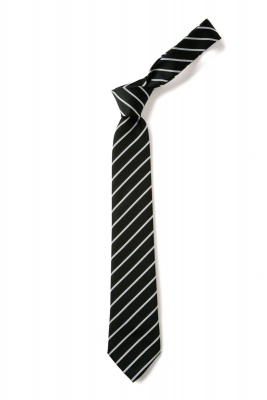 BOWHOUSE PRIMARY SCHOOL TIE