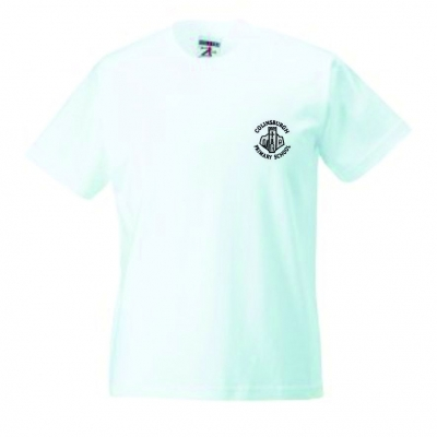 COLINSBURGH PRIMARY SCHOOL T-SHIRT