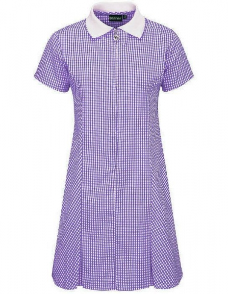 C:\Users\amcwilliam\Pictures\PURPLE GINGHAM DRESS.jpg