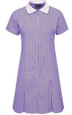 Bluemax Avon Gingham Dress