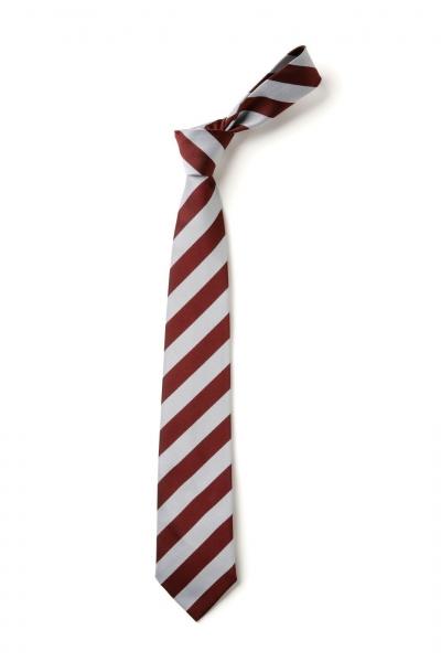Eaastertoun Primary School Tie