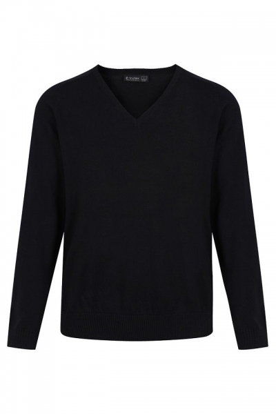 Regular fit v-neck cotton jumper