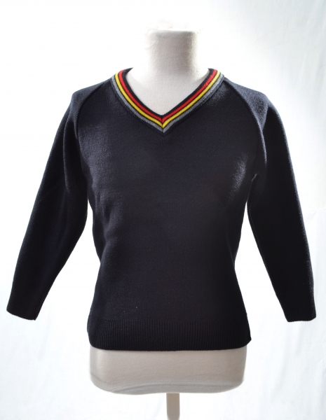 FORTHILL PRIMARY SCHOOL KNITTED JUMPER