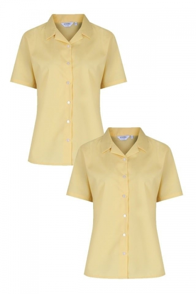 NON IRON SHORT SLEEVE POLYCOTTON BLOUSE - TWIN PACK